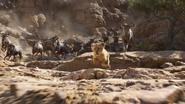 Lionking2019-animationscreencaps.com-4619