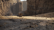 Lionking2019-animationscreencaps.com-5490