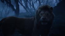 Lionking2019-animationscreencaps.com-10025