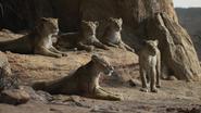 Lionking2019-animationscreencaps.com-7201