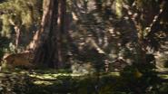 Lionking2019-animationscreencaps.com-9010