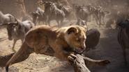 Lionking2019-animationscreencaps.com-4745