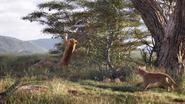 Lionking2019-animationscreencaps.com-2337