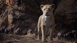 Lionking2019-animationscreencaps.com-7439