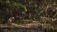 Lionking2019-animationscreencaps.com-9282
