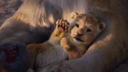 Lionking2019-animationscreencaps.com-316