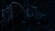Lionking2019-animationscreencaps.com-8275