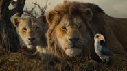 Lionking2019-animationscreencaps.com-10928