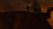 Lionking2019-animationscreencaps.com-11947