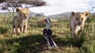 Lionking2019-animationscreencaps.com-2273