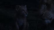 Lionking2019-animationscreencaps.com-3708
