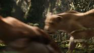 Lionking2019-animationscreencaps.com-8995