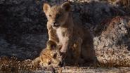 Lionking2019-animationscreencaps.com-2778