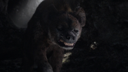 Lionking2019-animationscreencaps.com-3169