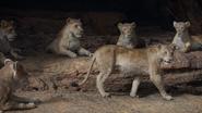 Lionking2019-animationscreencaps.com-7252
