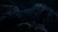 Lionking2019-animationscreencaps.com-8192