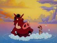 BN Timon & Pumbaa