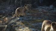 Lionking2019-animationscreencaps.com-2880