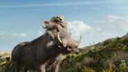 Lionking2019-animationscreencaps.com-6585