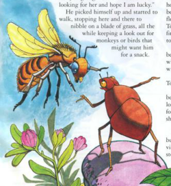 Tok and bee
