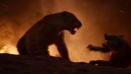 Lionking2019-animationscreencaps.com-11804