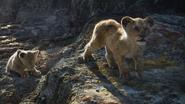 Lionking2019-animationscreencaps.com-2875