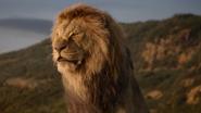 Lionking2019-animationscreencaps.com-1392