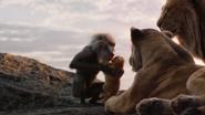 Lionking2019-animationscreencaps.com-331