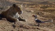 Lionking2019-animationscreencaps.com-7142
