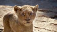 Lionking2019-animationscreencaps.com-4610