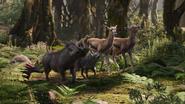 Lionking2019-animationscreencaps.com-8985