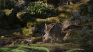 Lionking2019-animationscreencaps.com-9084