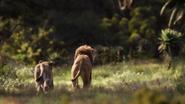 Lionking2019-animationscreencaps.com-9393