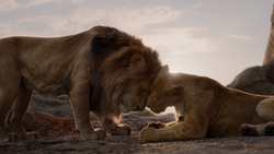 Lionking2019-animationscreencaps.com-282