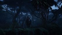 Lionking2019-animationscreencaps.com-10013