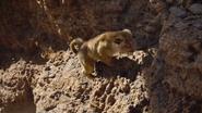 Lionking2019-animationscreencaps.com-4984