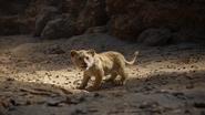 Lionking2019-animationscreencaps.com-5485