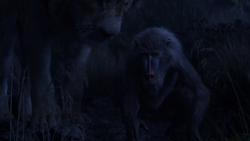 Lionking2019-animationscreencaps.com-10232
