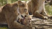 Lionking2019-animationscreencaps.com-2023