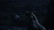 Lionking2019-animationscreencaps.com-7823