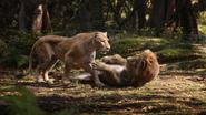 Lionking2019-animationscreencaps.com-9129