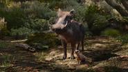 Lionking2019-animationscreencaps.com-9186