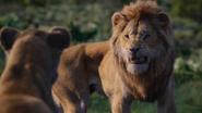Lionking2019-animationscreencaps.com-9811