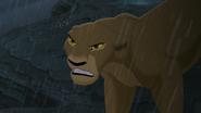 Lion-king2-disneyscreencaps.com-8179