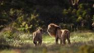 Lionking2019-animationscreencaps.com-9398