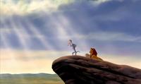 Simba 2003 DVD