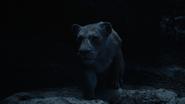 Lionking2019-animationscreencaps.com-7636