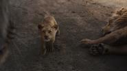 Lionking2019-animationscreencaps.com-5348