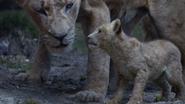 Lionking2019-animationscreencaps.com-5892