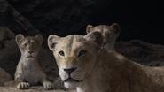 Lionking2019-animationscreencaps.com-7236
